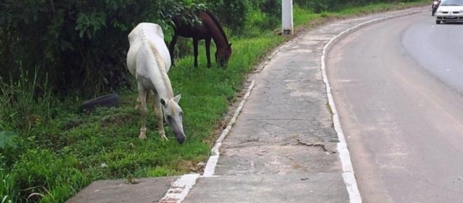 Governo da Bahia inaugura Anel Viário, mas não conserta estradas de ligação