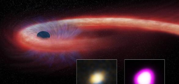 Destroyed Star Rains Onto Black Hole, Winds Blow It Back | NASA - nasa.gov