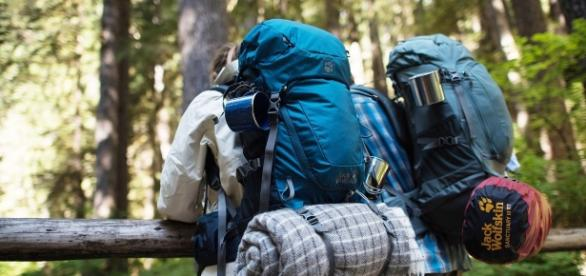 Trabalho voluntário é uma das formas mais populares de viajar sem pagar acomodação