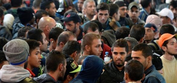 """500.000 Migranten in Deutschland untergetaucht - """"Melden sich ... - krone.at"""