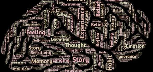 Cerveau - Intelligence via Pixabay CC BY