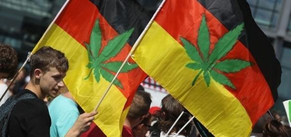 Life in Berlin: Georg Wurth On Legalized Medical Marijuana | NPR ... - nprberlin.de