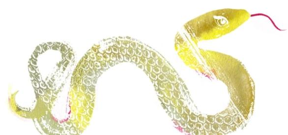 Susie Cox On: 2013 Year of the Water Snake | Tory Daily - toryburch.com