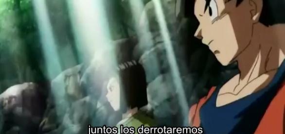 Dragon Ball Super 86: Goku y Androide 17