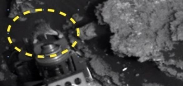Será que existe vida extraterrestre em Marte?