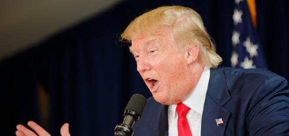 President Donald Trump (Micheal Vadon)
