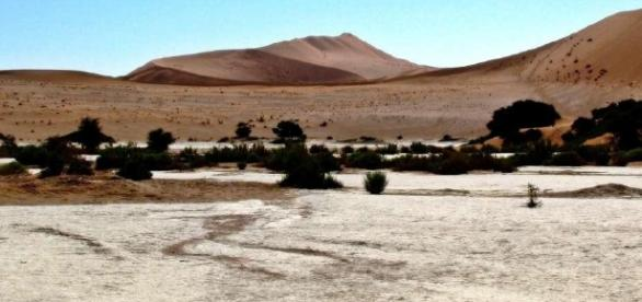 Sand dunes at Sossusvlei, Namibia. Photo by Jane Flowers (Own work)