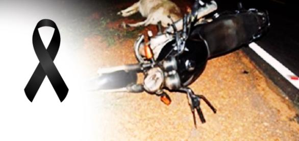 Cantor atropela animal e morre