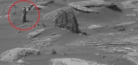 Fig.1 albero su Marte- (Fonte paranormal crucible)