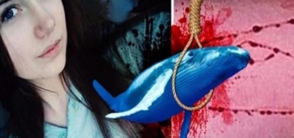 Baleia Azul tem seus motivos explicados na televisão - Google