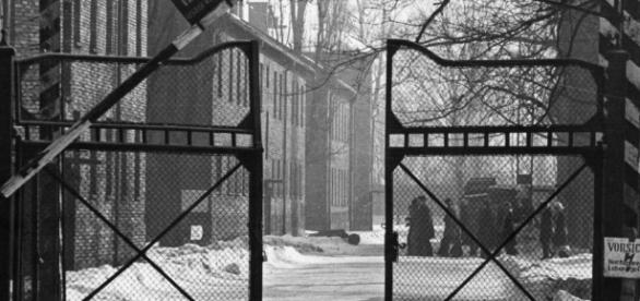 Stop Belittling The Holocaust With Your Stupid Nazi Analogies - thefederalist.com