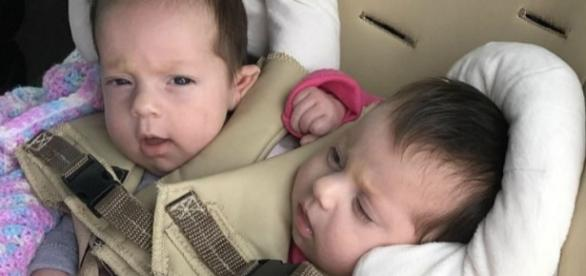 Os bebês de Chelsea Torres e Nick