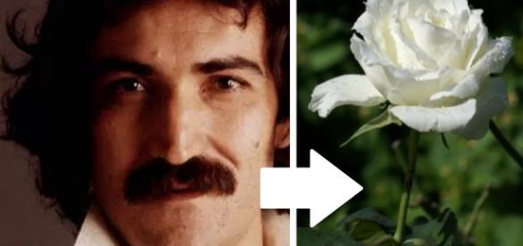 Último desejo do cantor Belchior aparece - Google