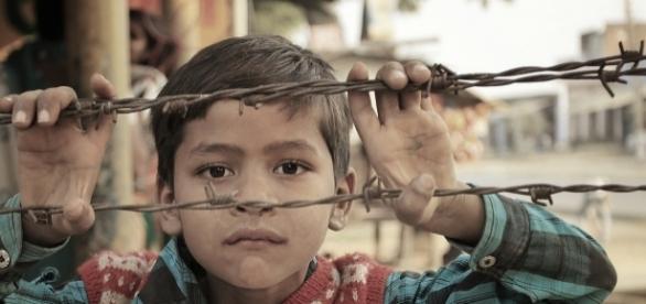 ¿Cuántos bebés, niños y adultos inocentes mueren cada día?
