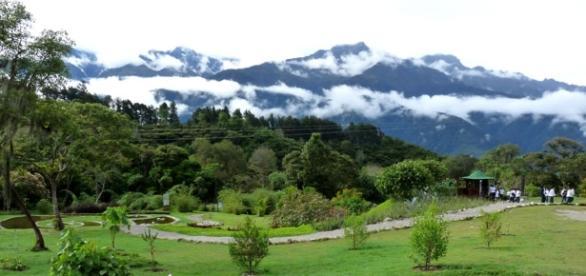 Mérida ofrece miles de alternativas naturales al turista.