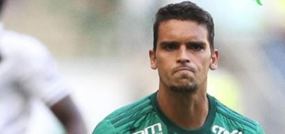 Palmeiras começou o Brasileirão arrasador