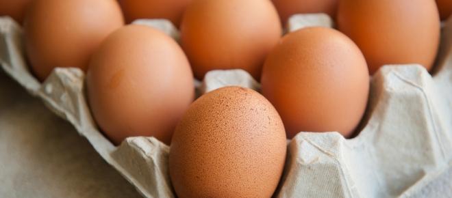 Protéines : essentielles pour vous aider à perdre du poids