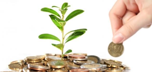 Fondo perduto, sgravi e tutti gli incentivi nel campo agricolo o extra agricolo