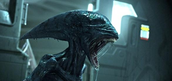 Alien Covenant - Movies Torrents - torrentsmovies.net