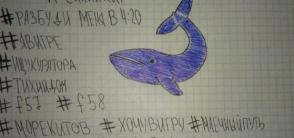 Blu Whale, 13enne salvata in extremis
