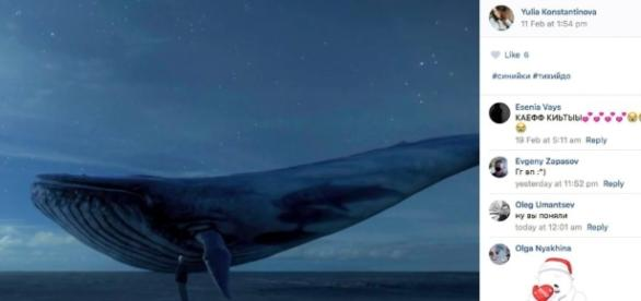 O jogo da Baleia Azul já fez vítimas em vários países