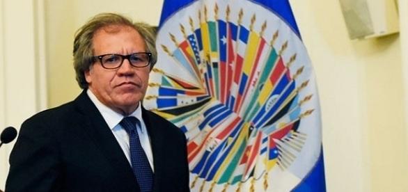 Secretário-geral da OEA, Luis Almagro afirma que órgão quer evitar que situação na Venezuela evolua para uma ditadura.