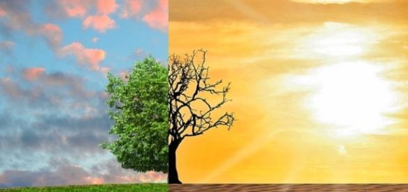 Climate Change/ Photo via CCO Public domain, Pixabay