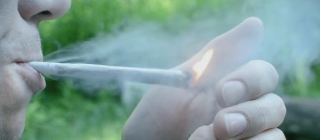 Cannabis: Wie Familienväter zu Verbrechern gemacht werden
