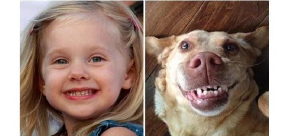 animais com expressões iguais as de crianças