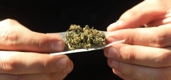 La extraña enfermedad provocada por la marihuana que preocupa a ... - culturacolectiva.com