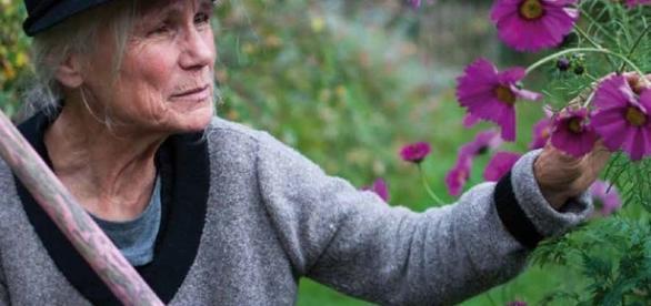 La contemplation de la nature, et de la beauté des fleurs