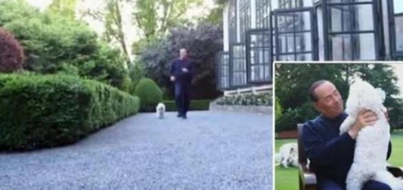 Silvio Berlusconi corre con i cani