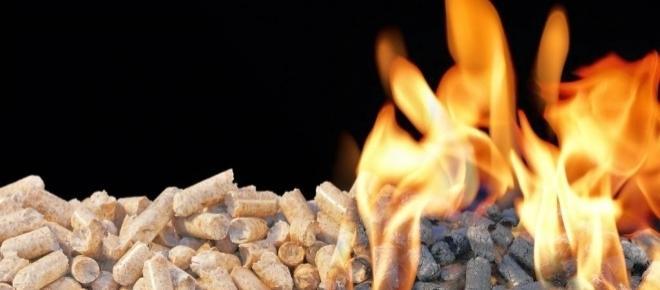 ¿Cómo se fabrica la biomasa? ¿Qué usos puede tener?