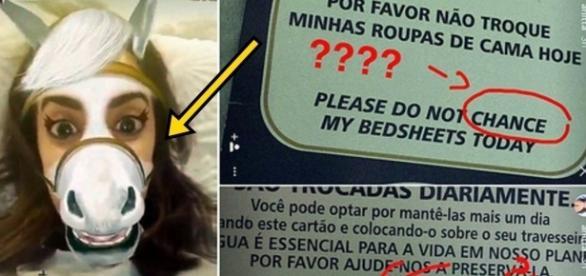 Anitta chama moradores de burros - Google