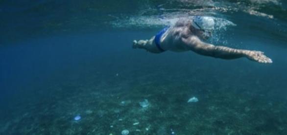 ONU lança campanha para tirar plásticos dos oceanos