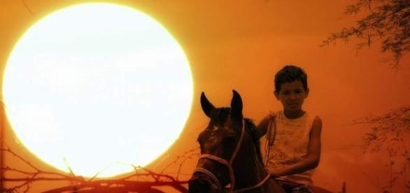 Foto da Chapada do Araripe, sertão pernambucano (Foto: Reprodução)