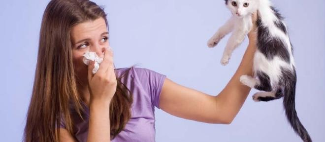 Faber, una sola prueba basta para detectar 240 tipos de alergias