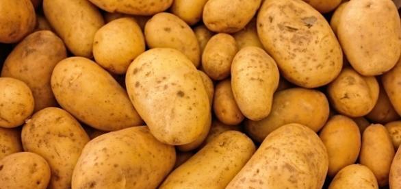 China plans to grow potato on the moon. Source: Pixabay