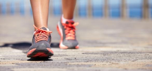 Caminhadas são essências para eliminar gorduras e melhorar a saúde