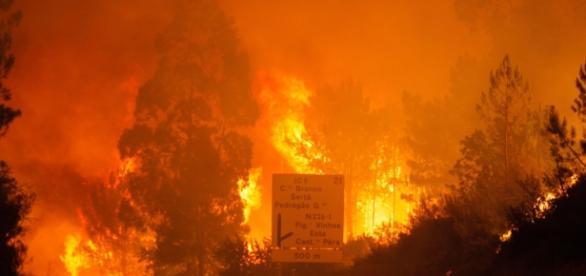 Incêndio de Pedrógão Grande faz 62 mortos