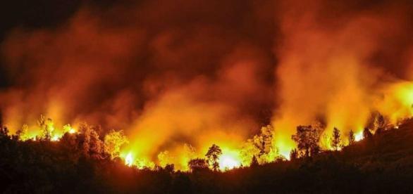 Pocos activos en el incendio de Portugal