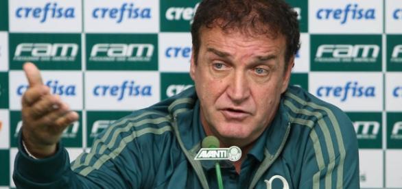 Técnico do Palmeiras pediu um atacante