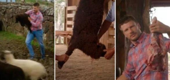 Em 2016, Rodrigo Hilbert mostrou cenas chocantes matando um filhote de ovelha na televisão. ( Foto: Reprodução)