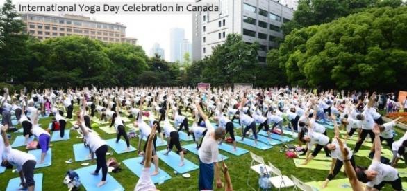 International Yoga Day : International Yoga Festival 2017 - indianyogaassociation.com