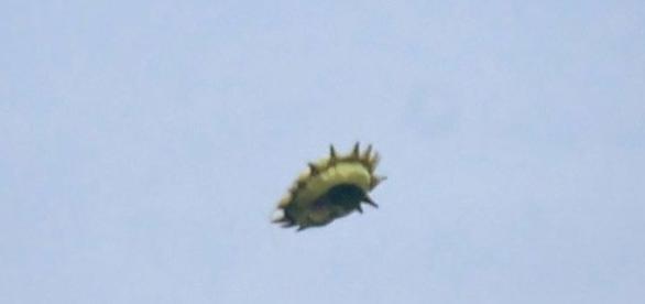 Canadense capta UFO em pântano do país (Ken Rice)