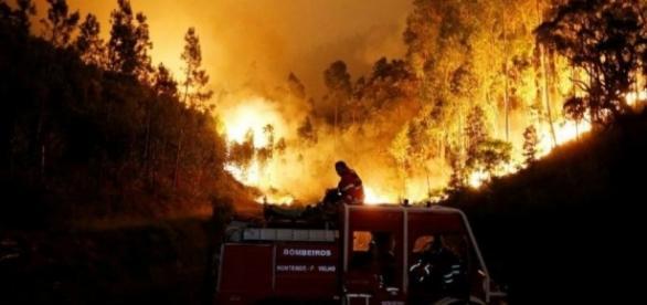 Incêndio de Portugal fez já 64 vítimas fatais