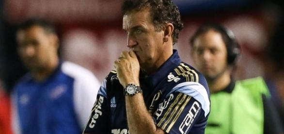 Técnico do Palmeiras não poderá contar com jogador