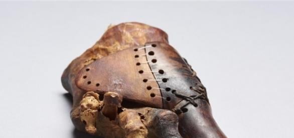 Sofisticación en el Antiguo Egipto: una prótesis de hace 3.000 años - com.es