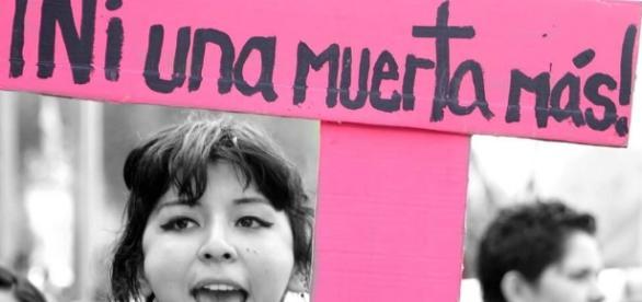 8M ¿Cuántas niñas y mujeres MENOS vamos a contar, Nuevo León ... - desinformemonos.org