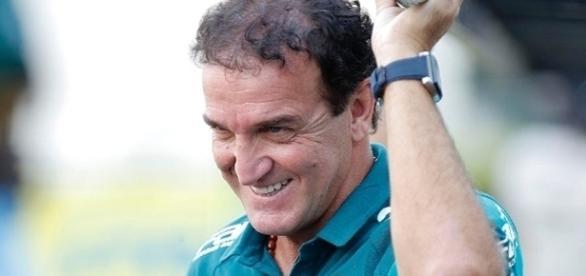 Técnico do Palmeiras tem que opinar entre dois jogadores ( Foto: Reprodução)
